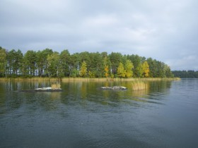 swedenpredatorfishing-lac-baven-gladdinge_22