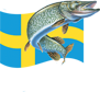 logo sweden predator fishing
